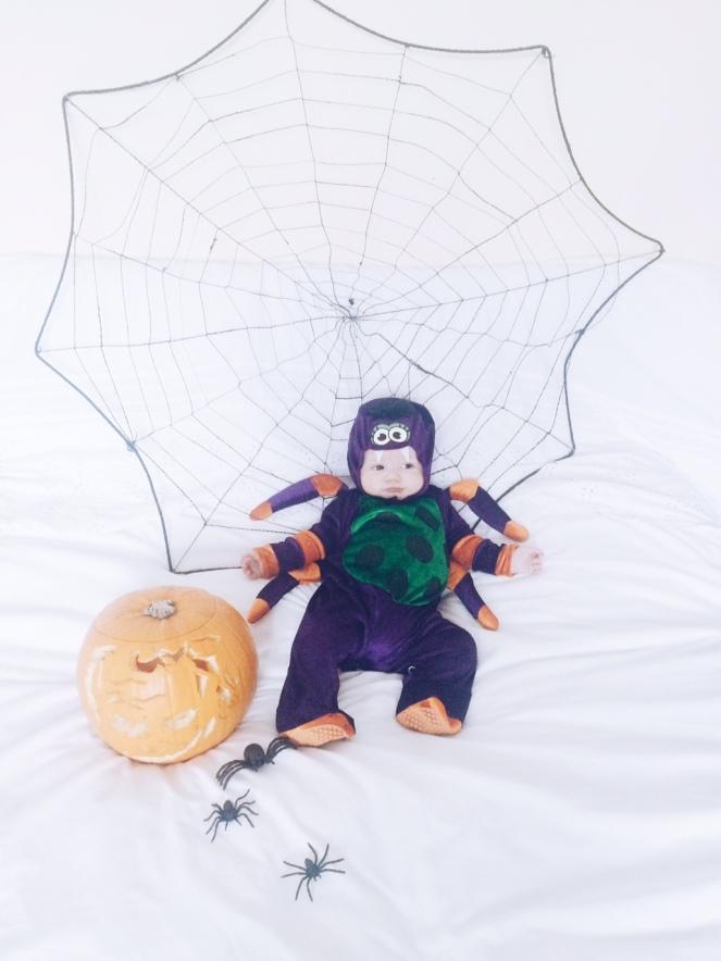 halloween_spider_baby